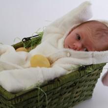 EasterBunny2012D