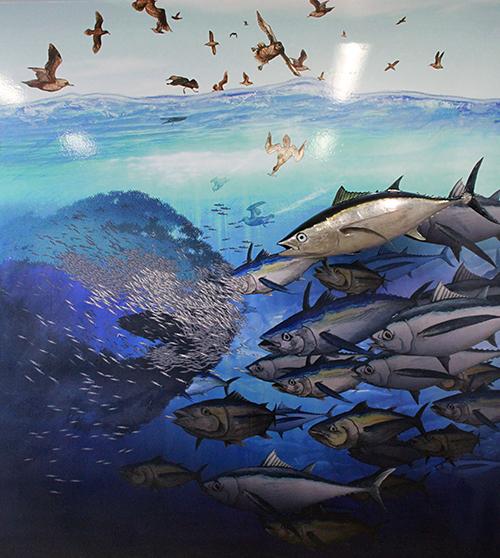 Albacore Mural