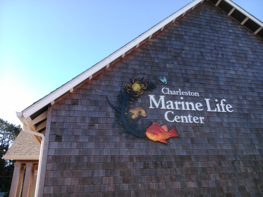 Charleston Marine Life Center Logo & Signs