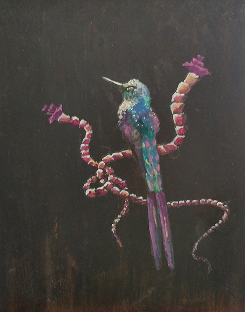 Tubeworms & Hummingbirds Series